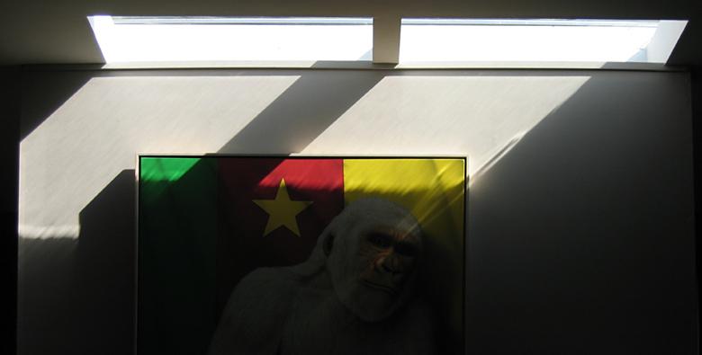 In Memoriam, Snowflake the Albino Gorilla        <br>8154