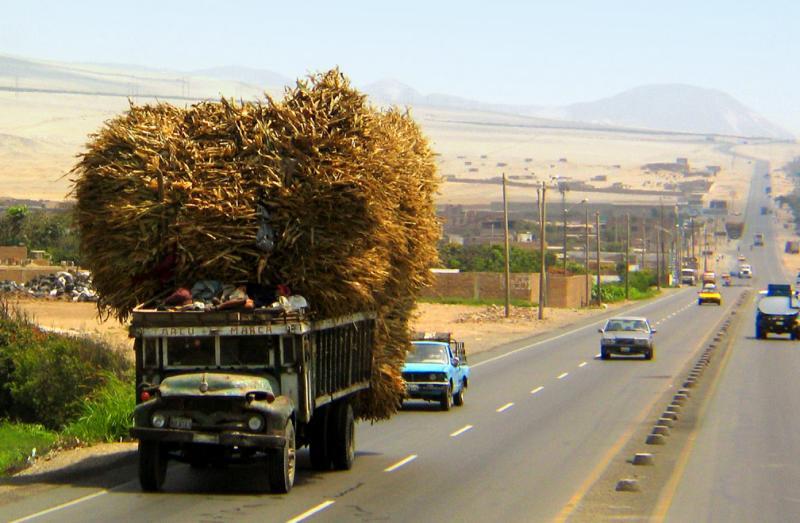 On the Pan American Highway, Trujillo, Peru