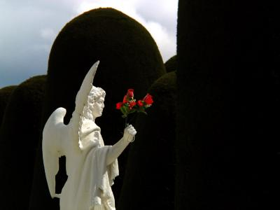 Roses in Hand, City Cemetery, Punta Arenas, Chile, 2004