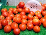 Florida tomatoes at the Farmer's Market