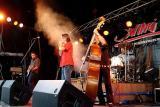 the Kingsnakes    -   Swing 2004