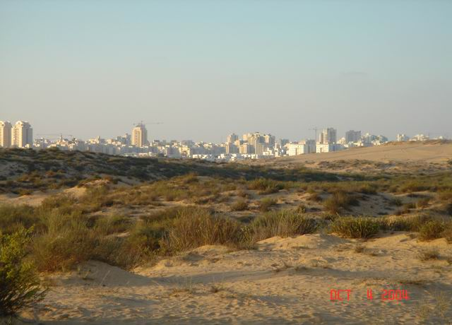 dune buggying near ashdod17.JPG