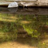 Mesa Creek