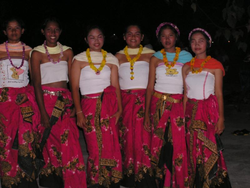 these ladies performed a beautiful dance