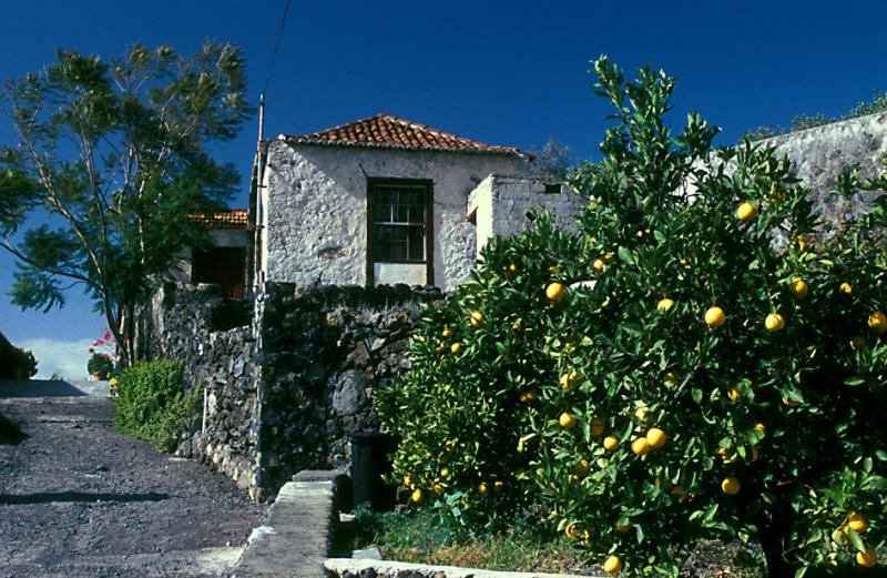 House near Todoque