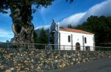 La Palma 2003-12