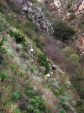 Climbing up La Jolla again