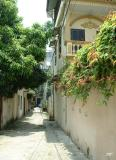 A Ha Noi alley