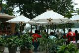 Lakeside cafe-Hoan Kiem lake-Ha Noi