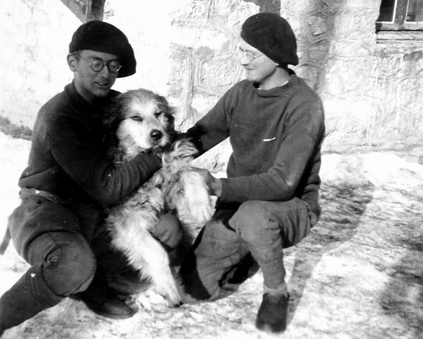 Le chien Tricouni