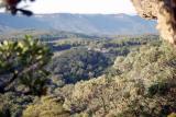 Yerranderie View