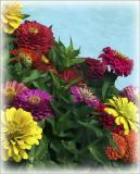 Poolside Bouquet