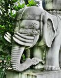 Mossy Elephant, Chengdu