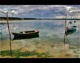 26.02.2005 ... In the lagoon of Foz do Arelho - Portugal