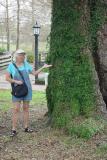 SARA UNDER THE FAMOUS EVANGELINE TREE
