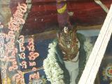 svami dhoDDachar-2