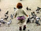 playing with pigeons.jpg
