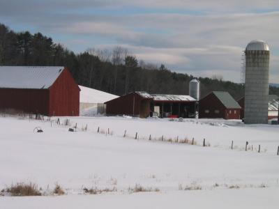 Norwich farm with silo