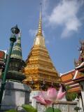 Visite usine Nikon Thaïlande