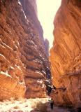 gavin in canyon
