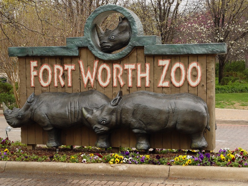 Fort Worth Zoo.jpg