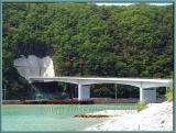 A bridge to... *,*?