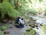 sgwd yr eira waterfall  129