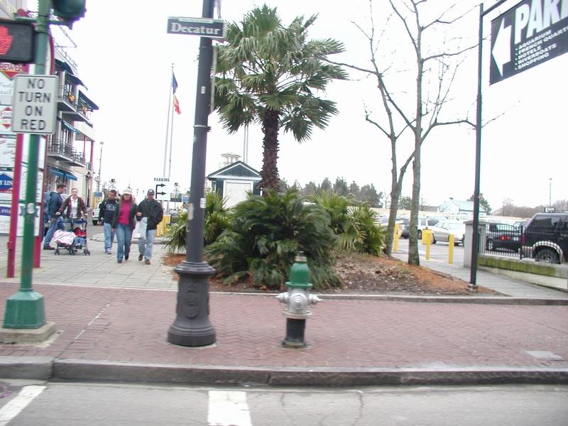 Decatur Is Actually Mulch Street.jpg