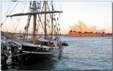 Barquentine Savanen, Sydney Opera House