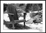 ds20050204_0005amwF Chair.jpg