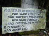 You are in an ecological paradise.  (Ilha Grande)  No kidding.