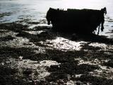 Fin d'une barque