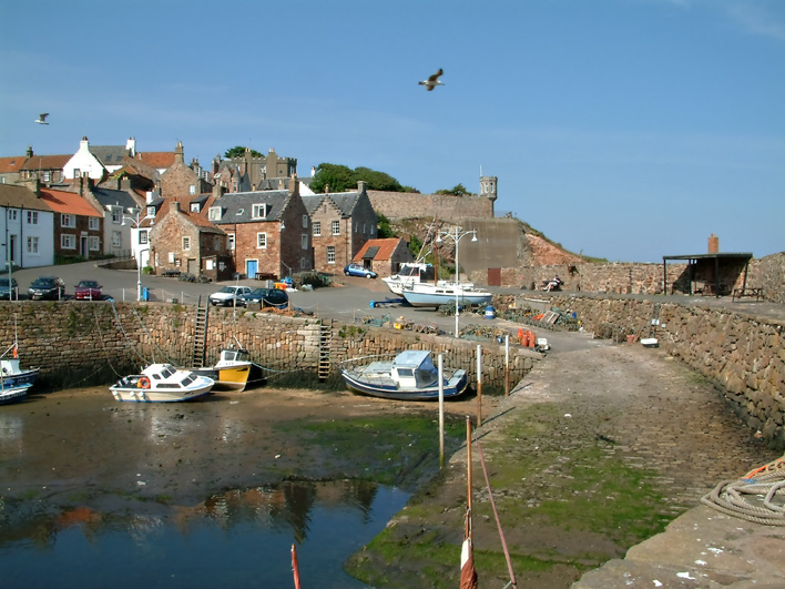 Crail Harbour View
