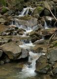 052  Creek cascade_6578`0403081341.JPG