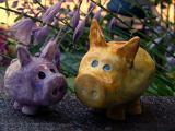 piggy talk