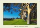 Kings Park 1