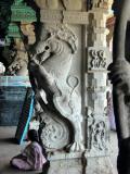 Standing Lion Pallava III