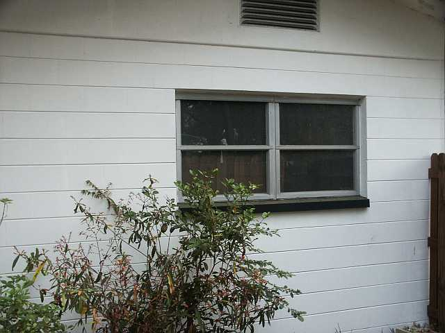 West Side Windows.jpg