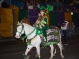 ONE OF THE MOUNTED PARADERS