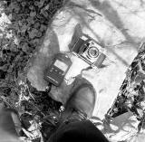 Camera Samples