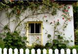 Cottage window