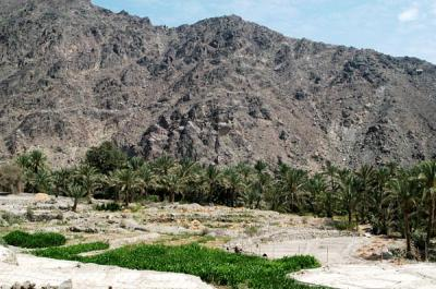 Wadi is Arabic for valley