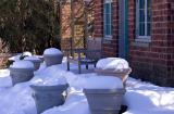 Snow Pots