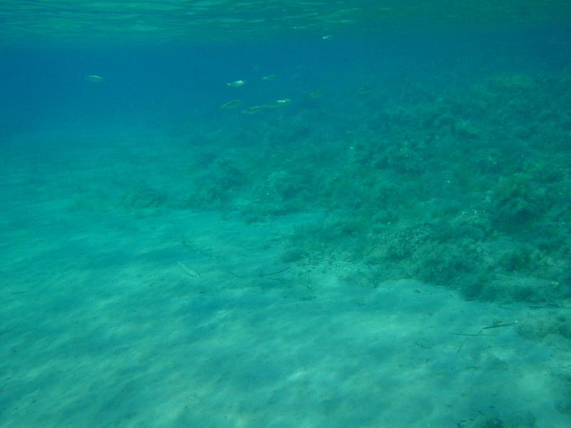Atsitsa, Skyros Island