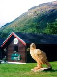 One big bird at the Ardgarton Forest Park Centre
