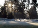 Golf Course on a Frosty Morning