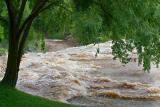 Reedy Falls Area