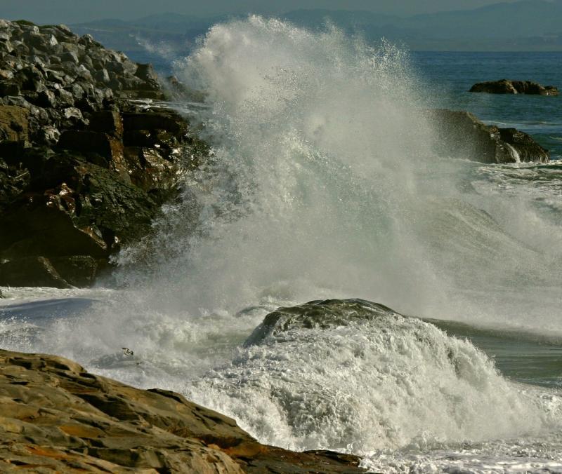 007_Wave splash_8492`0501311232.JPG