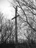 Long Branch April 2004