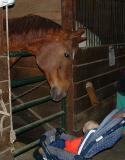 James at the Stables